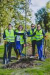 17. Puude istutamine Euroopa koostööpäeval.JPG -